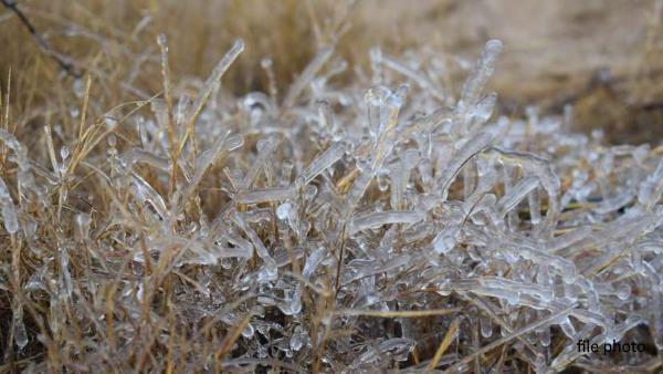 राजस्थान बना बर्फिस्तान: 24 घंटे में 5 डिग्री गिरकर -1.8 पर पहुंचा Sikar का पारा, फतेहपुर में जमी बर्फ