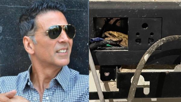 Akshay Kumar: स्विच बोर्ड में छिपा बैठा था मेंढक, अक्षय कुमार ने जैसे ही लगाया फोन का चार्जर...