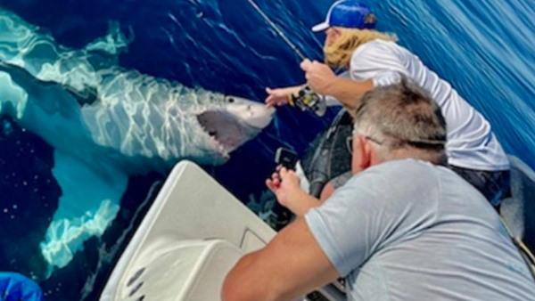 Video: मछली पकड़ रहे दोस्तों पर खतरनाक शार्क ने किया हमला, जबड़े से पकड़ी बोट और फिर...