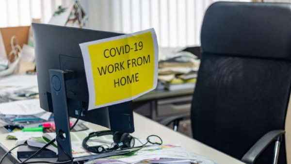 BJP MP wants IT companies stop work from home corona epidemic