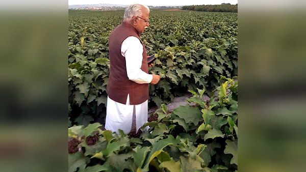 CM बोले- हरियाणा में 1 अप्रैल से शुरू होगी फसलों की खरीद, कोरोना को देखते हुए बढ़ाए जाएंगे खरीद केंद्र