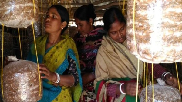 ये भी पढ़ें: आहार केंद्रों के संचालन के लिए ओडिशा सरकार ने महिला स्वयं सहायता समूहों के साथ किया समझौता