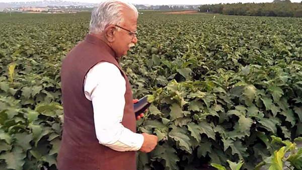 किसानों के लिए 'हर खेत-स्वस्थ खेत' अभियान चलाएगी हरियाणा सरकार, मिलेंगे ऐसे फायदे