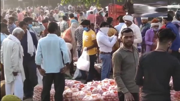 huge crowd in vegetables market of Moradabad Uttar Pradesh, people were seen without mask, breaking Social distancing