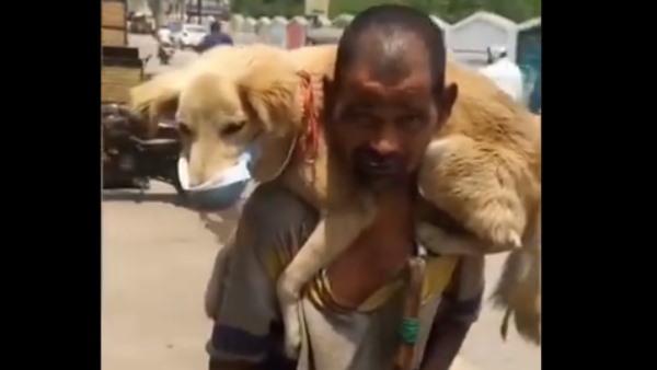 Video: कुत्ते को कंधे पर बिठाकर पहनाया मास्क, बोला- बच्चा है मेरा, मैं मर जाऊंगा लेकिन...