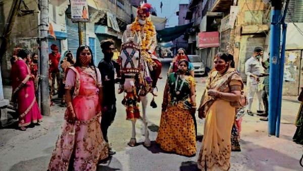 घोड़ी पर सवार दूल्हा, बाराती सिर्फ चार बहनें, घरवालों से बोलीं-'हम ही ब्याह कर ले आएंगी अपने भाई को'