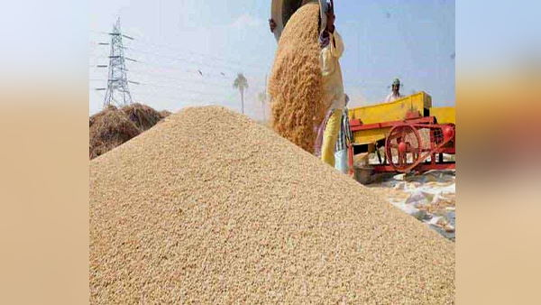 45 lakhs tonnes of wheat procured on MSP from farmers by government agencies in Haryana
