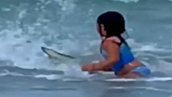 Video: समुद्र बीच पर खेल रही बच्ची का शार्क से हो गया सामना