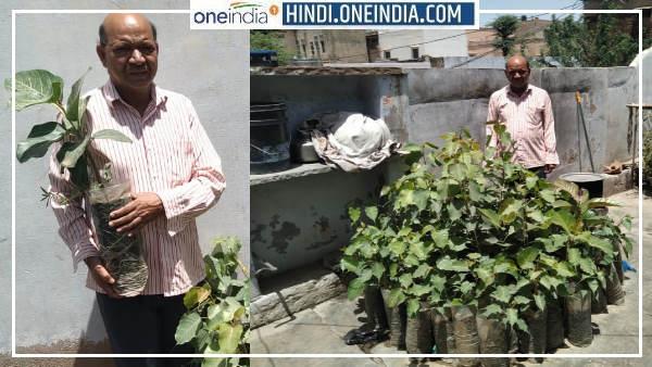 Gopal Sharma Khetri : राजस्थान के 'ऑक्सीजन बाबा' ने 46 साल में बांटे बरगद-पीपल के 20 हजार पौधे, VIDEO