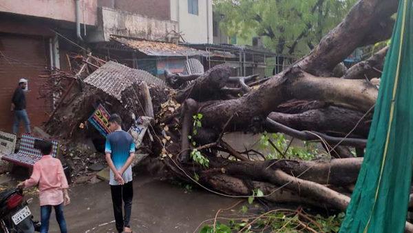 समुद्र से सटे गुजरात के तटीय इलाकों में भारी बारिश, जन-जीवन अस्त-व्यस्त, सैकड़ों पेड़ उखड़े, छतें गिरीं