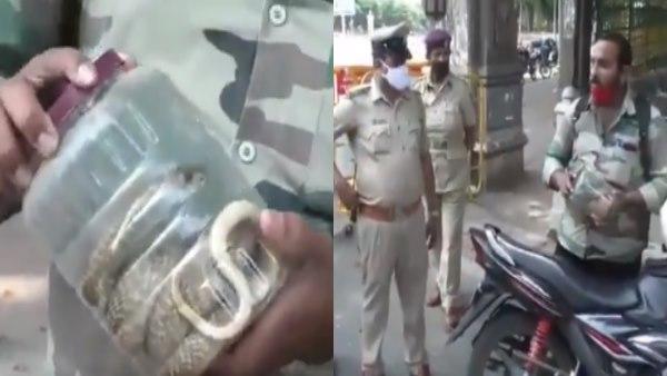 ये भी पढ़ें-Lockdown के बीच बैग में कोबरा लेकर घूम रहा था शख्स, पुलिस ने रोका तो खुला असली राज