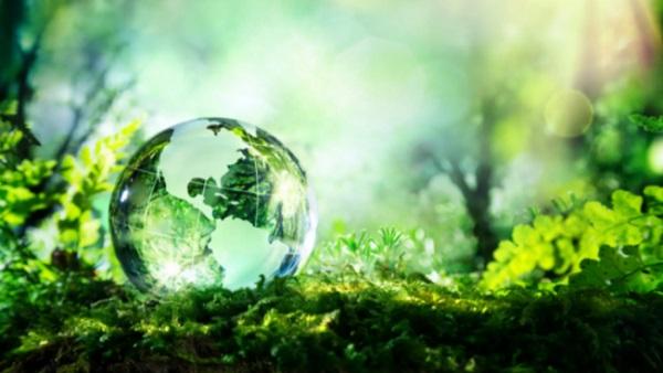 इसे भी पढ़ें- World Environment Day 2021: क्या है विश्व पर्यावरण दिवस की थीम, इस साल पाकिस्तान करेगा मेजबानी