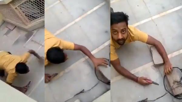 Video: छिपकली की तरह रेंगकर कनेक्शन काटने गया 'बिजली चोर', अधिकारी को देखा तो उड़ गया फ्यूज!