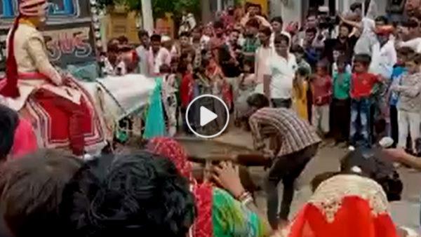 देखें VIDEO कैसे अचानक दूल्हे को भगा ले गई घोड़ी, DJ संचालक ने बताई असली वजह, लोगों ने यूं ली मौज