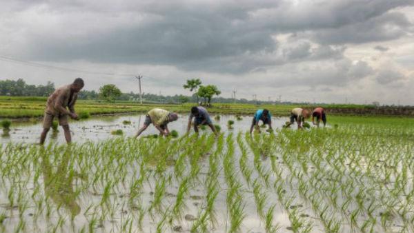 PM Kisan Scheme: जानिए कब जारी होगी पीएम किसान योजना की 9वीं किस्त