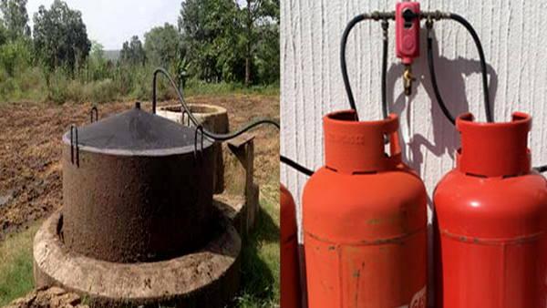 हरियाणा: किसान परिवारों के लिए लाभकारी साबित हो रहे गोबर गैस प्लांट, लगवाना आसान, खर्च बेहद कम