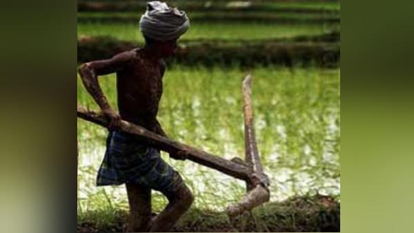 नहीं थे बैल लाने के पैसे, तो पिता के लिए दो बेटियों ने खुद हल खींचकर जोत डाला पूरा खेत