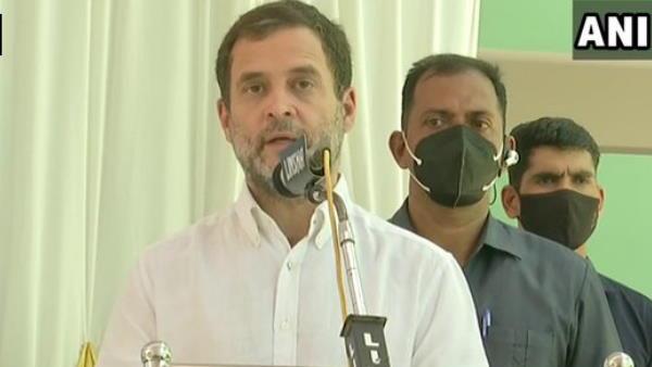 राहुल की कांग्रेस नेताओं को दो टूक- पार्टी को भाजपा से डरने वाले नेताओं की जरूरत नहीं