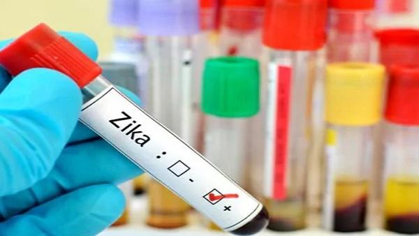 केंद्र ने महाराष्ट्र में भेजी एक उच्च स्तरीय टीम, जीका वायरस का केस मिलने के बाद स्थिति का लेगी जायजा