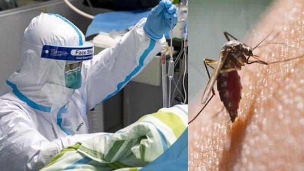 फिरोजाबाद में बढ़ा डेंगू का कहर, बच्चों की मौत की जांच करने पहुंची सेंट्रल टीम ने बताया ये कारण