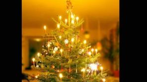 Merry Christmas:  जानिए क्यों सजाया जाता है 'क्रिसमस ट्री' ?