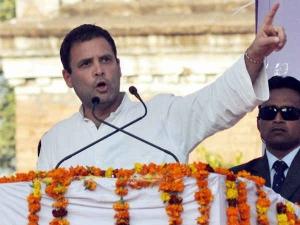 राहुल गांधी ने की केरल घटना की निंदा, कांग्रेस कार्यकर्ताओं पर केस दर्ज
