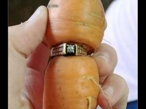 OMG! गाजर में फंसी मिली डायमंड रिंग, 13 साल पहले हुई थी गुम