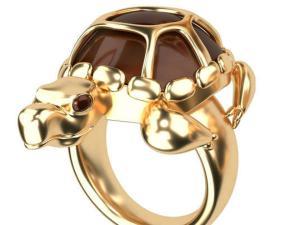 Feng Shui: दुर्भाग्य दूर भगाती है कछुए की अंगूठी
