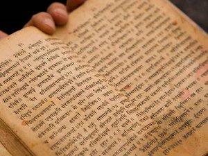 PU के भूविज्ञानी का दावा, भगवान ब्रह्म ने खोजे डायनासोर
