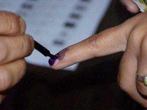 वोटर लिस्ट में आपका नाम है या नहीं, घर बैठे ऐसे चेक करें