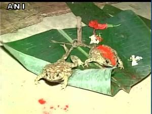 असम के जोराहट में बारिश के लिए कराई गई यह अनोखी शादी