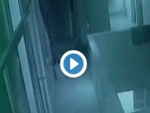Video- आंटी ने 18 दिन के नवजात को तीसरी मंजिल से नीचे फेंका