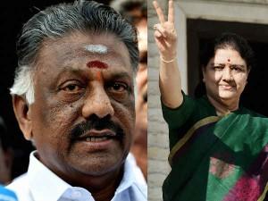 केंद्र सरकार की ओर से अॅटार्नी जनरल मुकुल रोहतगी ने तमिलनाडु के राज्यपाल को शक्ति परीक्षण की सलाह दी