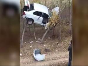 देखिए कैसे हवा में उछलकर पेड़ पर लटक गई SUV कार, Video हुआ वायरल