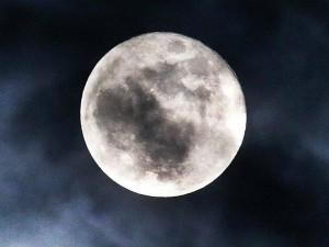 बदली चंद्रमा की चाल अब हर कोई होगा मालामाल, जानिए कैसे?