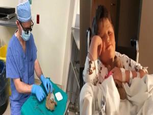 जब डॉक्टर ने किया टैडी बियर का ऑपरेशन, देखें Viral तस्वीरें