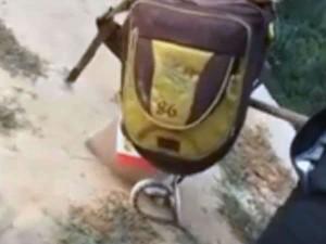 बच्ची के स्कूल बैग में छिपा बैठा था 5 फीट लंबा सांप, बैग खोलते ही मचा हड़कंप, Viral हुआ वीडियो