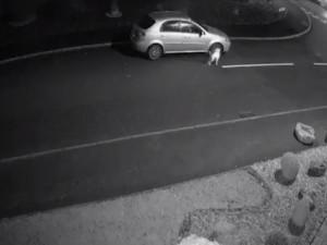 कार का दरवाजा पीटता रहा कुत्ता और सड़क पर बेसहारा छोड़ गया मालिक, भावुक कर देगा वीडियो