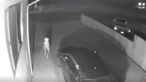 घर के बाहर CCTV में दिखा अजीब प्राणी, महिला ने शेयर किया वीडियो तो चौंके लोग