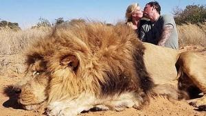 शेर को मार उसके पास बैठकर KISS करने लगा कपल, वायरल हुई फोटो तो मचा बवाल