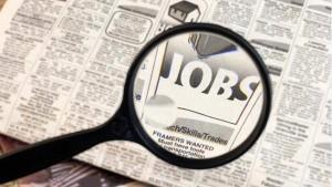 सरकारी नौकरी: पटवारी के 1194 पदों पर वैकेंसी, करें आवेदन