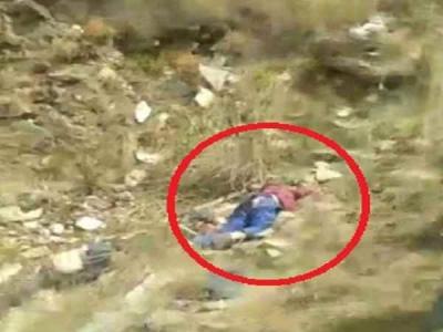 शिमला में 500 फुट गहरी खाई में गिरी बोलेरो, 6 की मौत एक घायल
