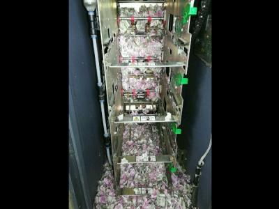 ATM में घुसकर चूहों ने रद्दी में बदल दिए 12 लाख रुपए
