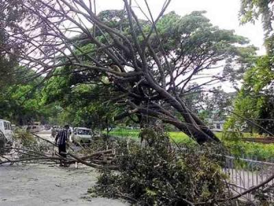 यूपी: तूफान ने मचाई फिर तबाही, 10 की मौत, आज भी अलर्ट जारी