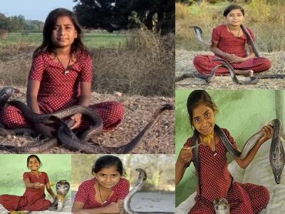 VIDEO: वाकई में 'विष कन्या' है ये लड़की, 6 कोबरा हैं दोस्त