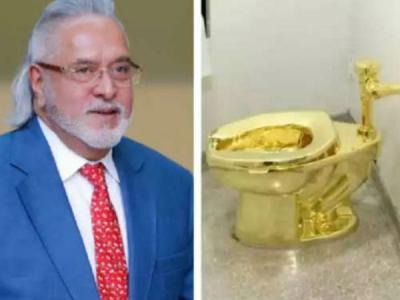 लेखक का दावा, सोने का टॉयलेट इस्तेमाल करता  है माल्या