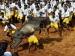 Tamilnadu: जल्लीकट्टू में 2 लोगों की गई जान, 30 घायल