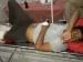 बलरामपुर: मुठभेड़ के बाद 1 लाख का इनामी निजामुद्दीन अरेस्ट