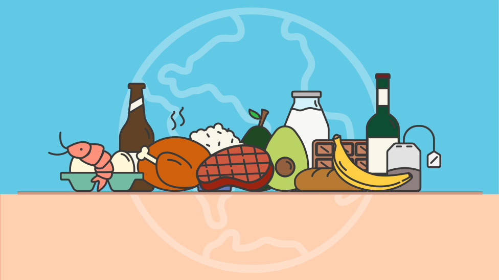 Illustration for calculator on environmental impact of different foods
